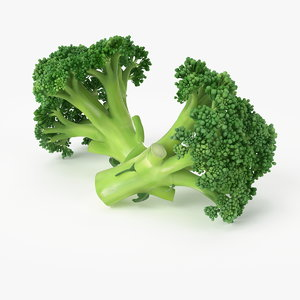 3d realistic broccoli real model