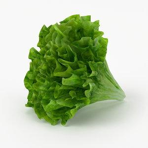 realistic lettuce real vegetables 3d model
