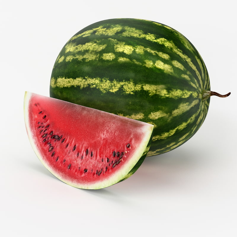 realistic watermelon real 3d model