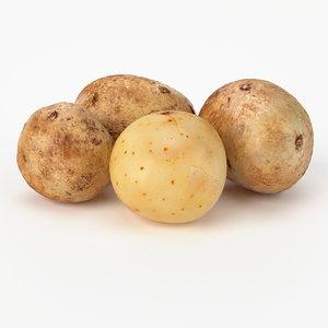 realistic potato real vegetables 3d max
