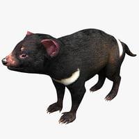 tasmanian devil rigged max