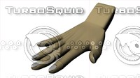 hand 3ds
