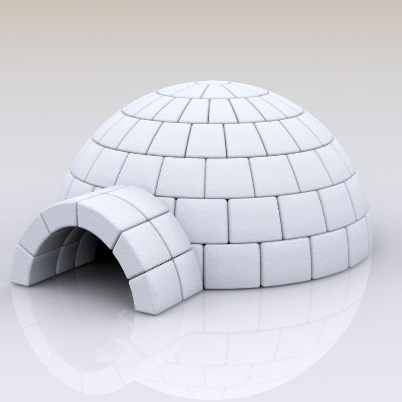 igloo house max