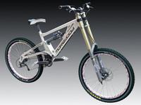 Morewood Izimu DH bike