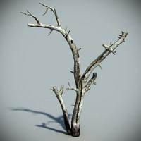 3d model dead tree