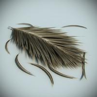 max dead palm leaf