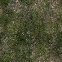 ground with grass 1
