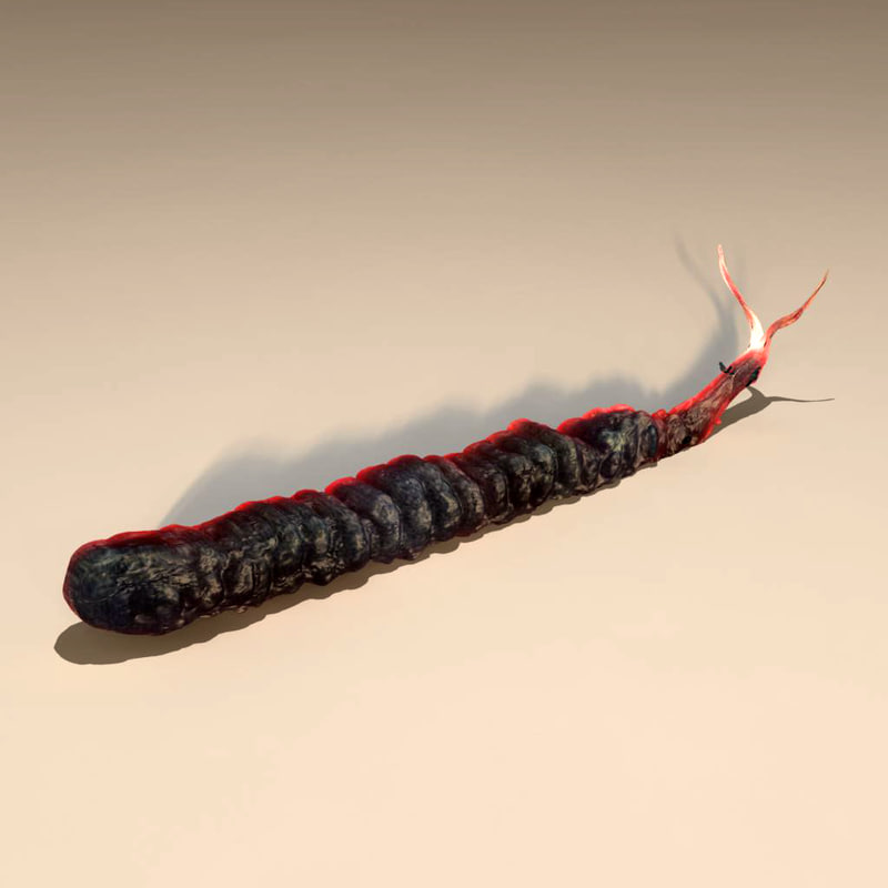alien worm x