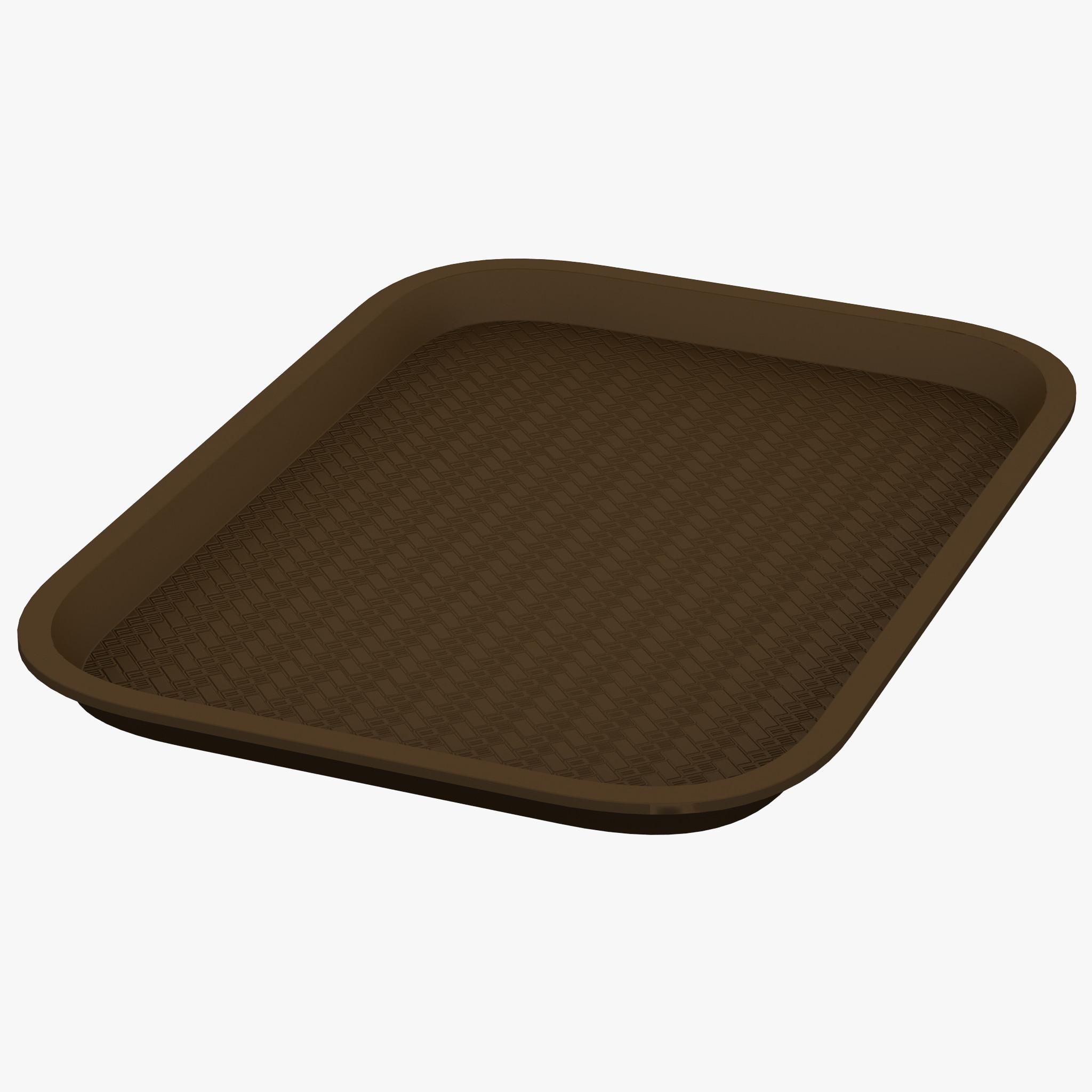 3d tray model