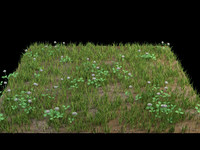 grass flower ground 3d model