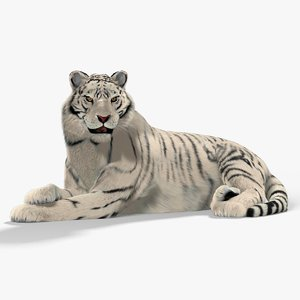 white tiger cat fur 3d model
