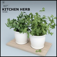 herbs kitchen 3d max