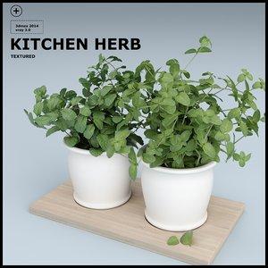 herbs kitchen 3d max