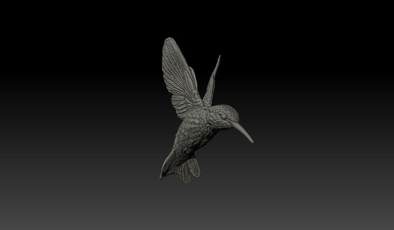 humming bird 3d model