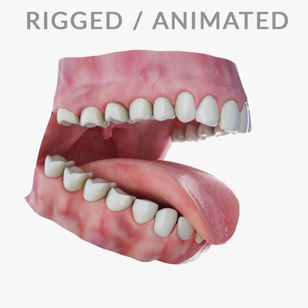 3d human teeth head