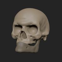 3d model man skull z old
