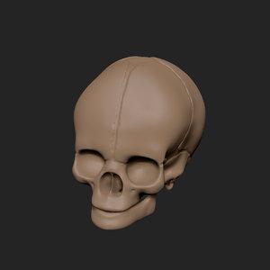 3ds max skull z