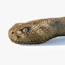 Viper 3D models