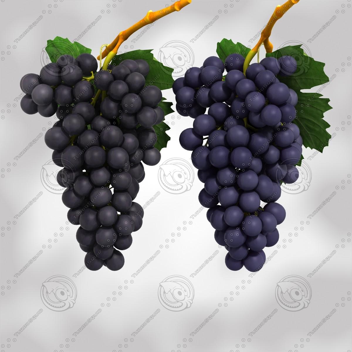 black blue grapes max