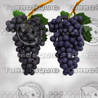 black blue grapes max
