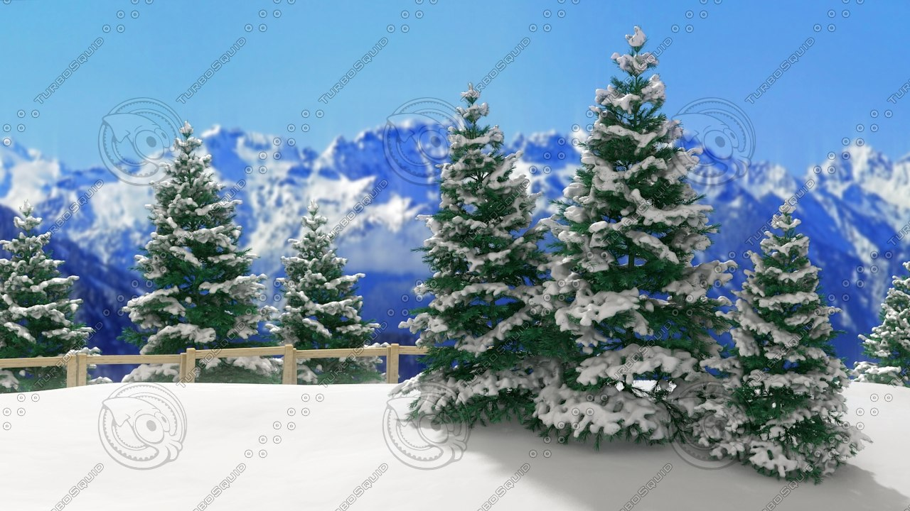 3d model pine tree forest -