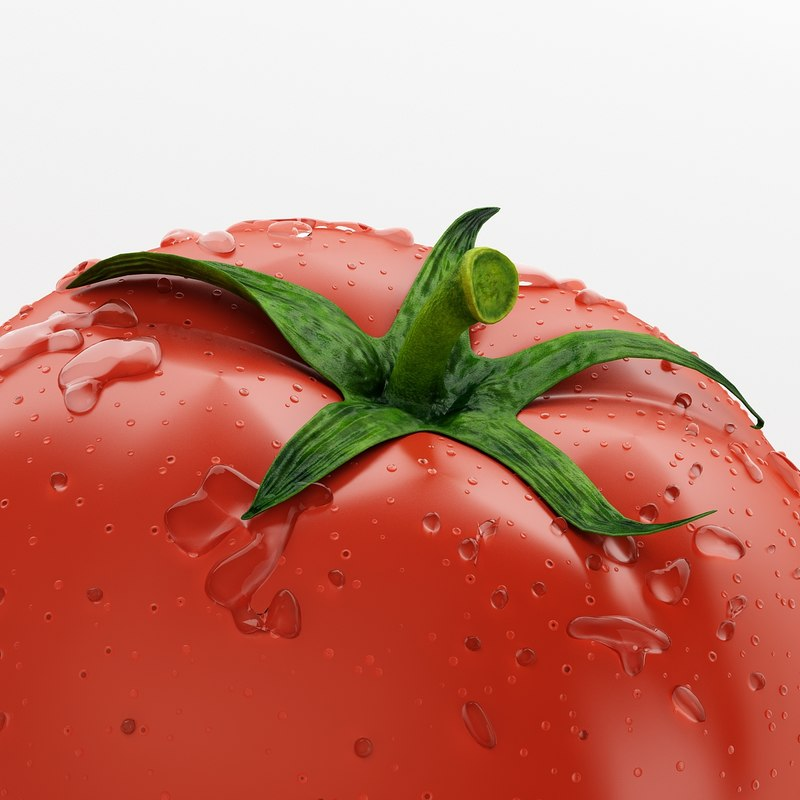 realistic tomato modeled 3d model