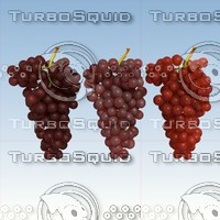 3d model red grapes