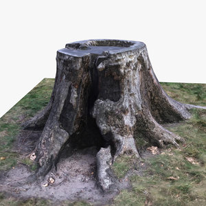 tree stump 3ds