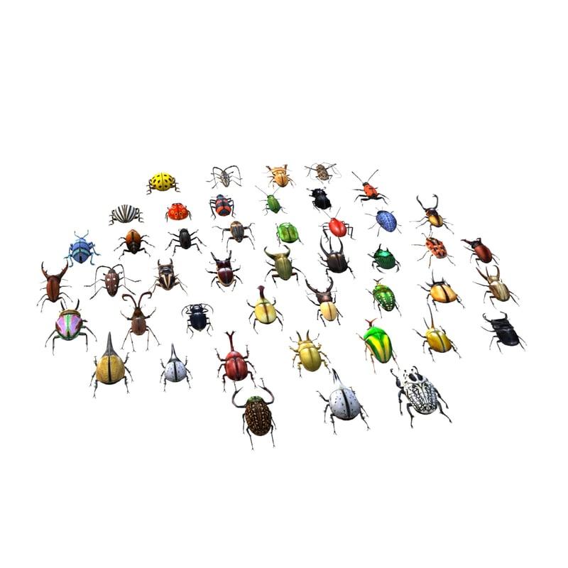 3ds max beetle leptinotarsa decemlineata