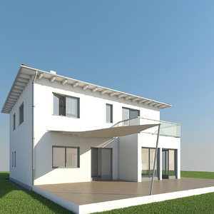 house roof max