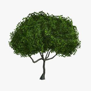 tree small small01 3d max