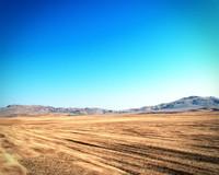 3d realistic desert