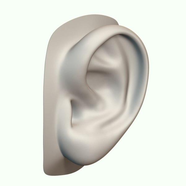 3d obj ear