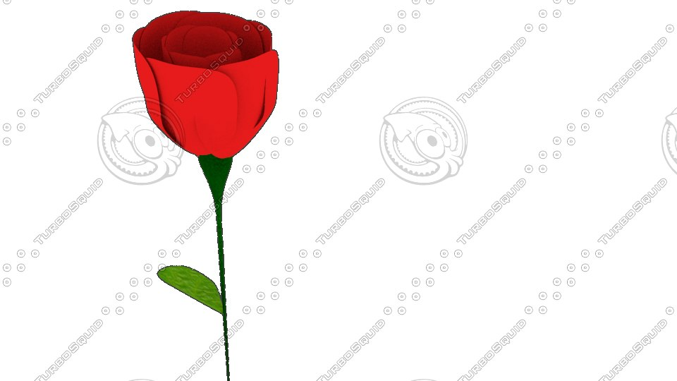 3dsmax rosa rose plant