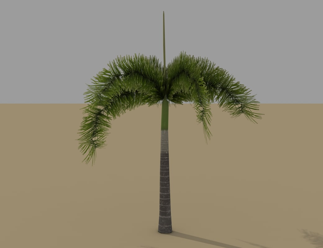 3d model of palm tree