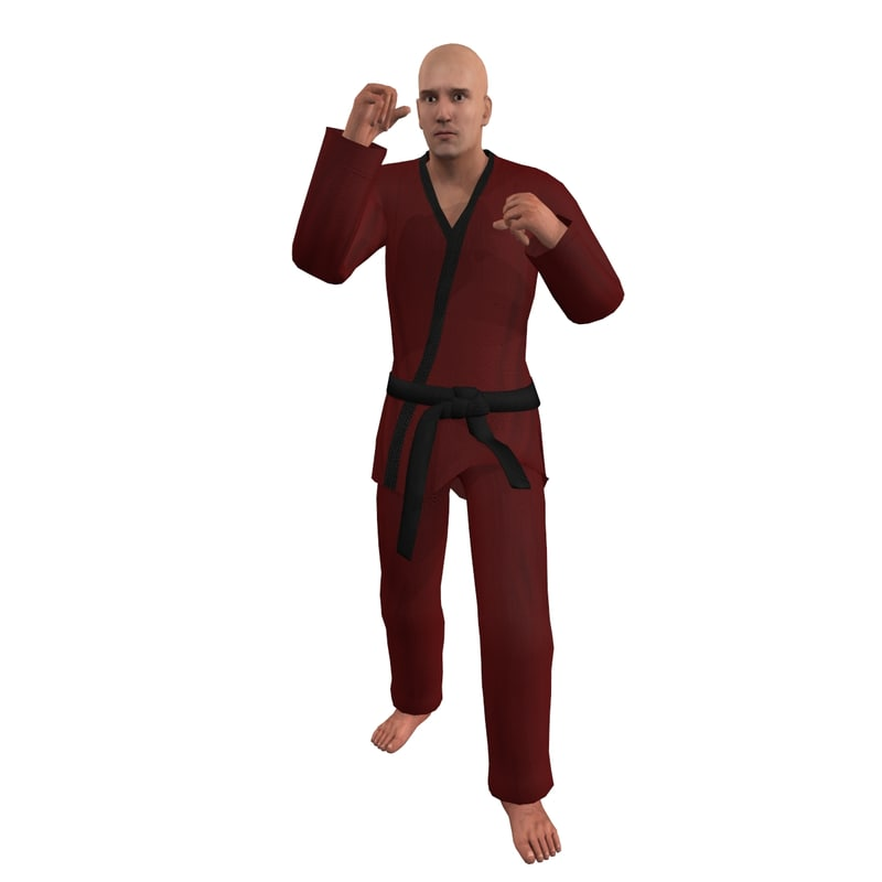 rigged martial artist 3d max