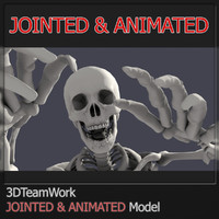 3d human skeleton jointed model