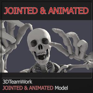 3d human skeleton jointed model