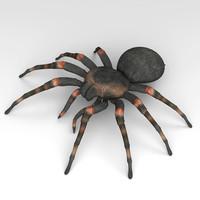 tarantula max