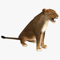 lioness pose 4 fur max