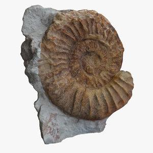 3dsmax fossil
