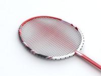 3dsmax badminton racquet