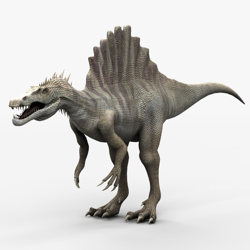 3d spinosaurus dinosaur animation model