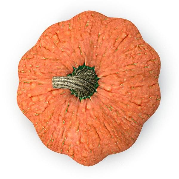 pumpkin max