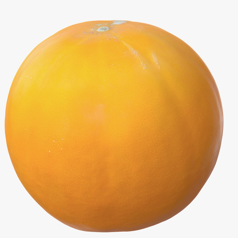 melon photorealistic scaned 3d max