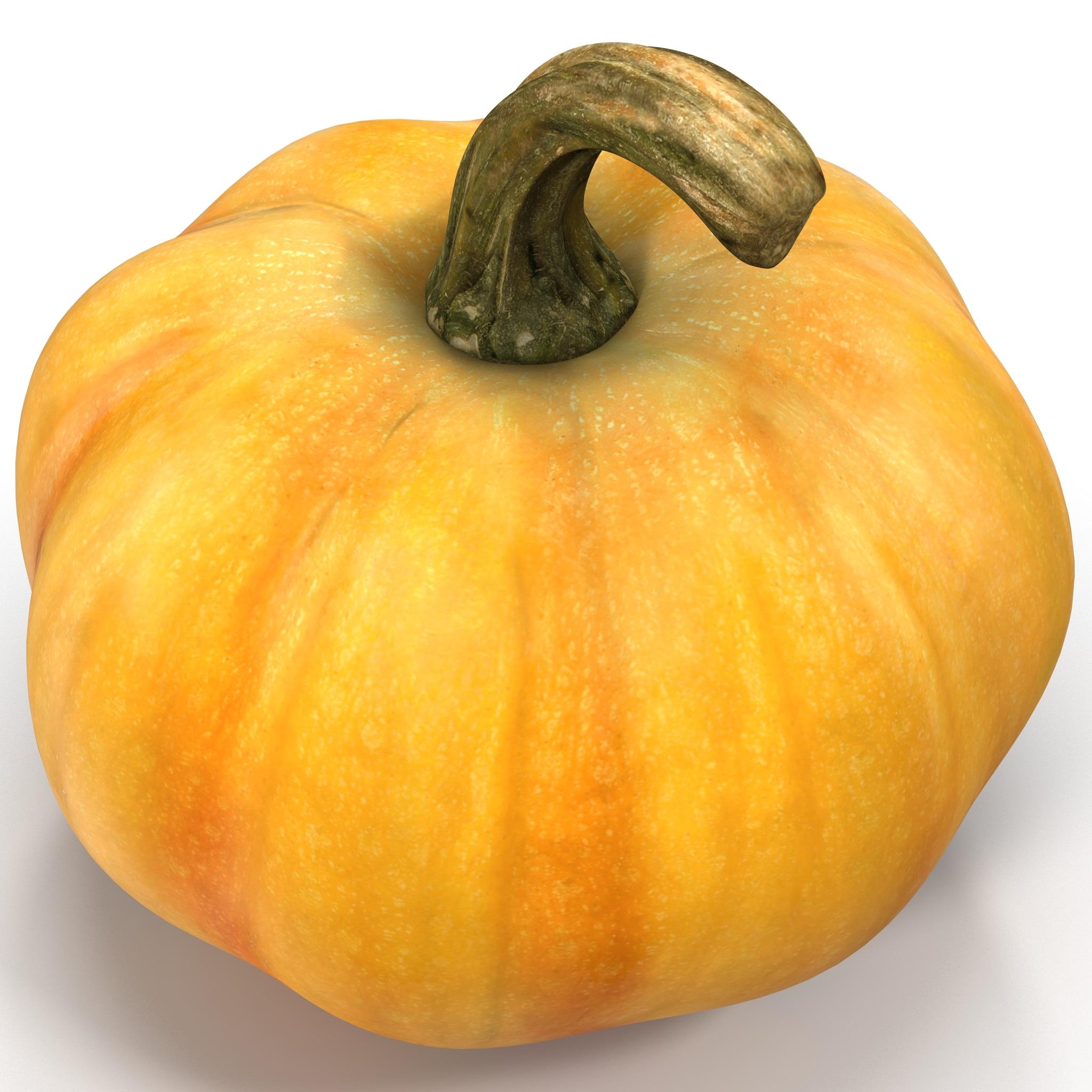 3d pumpkin 02 model