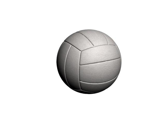 valleyball ball max