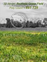 model: grass field 3d obj
