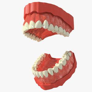 3ds max human teeth