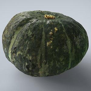 gourd vegetable plant 3d model